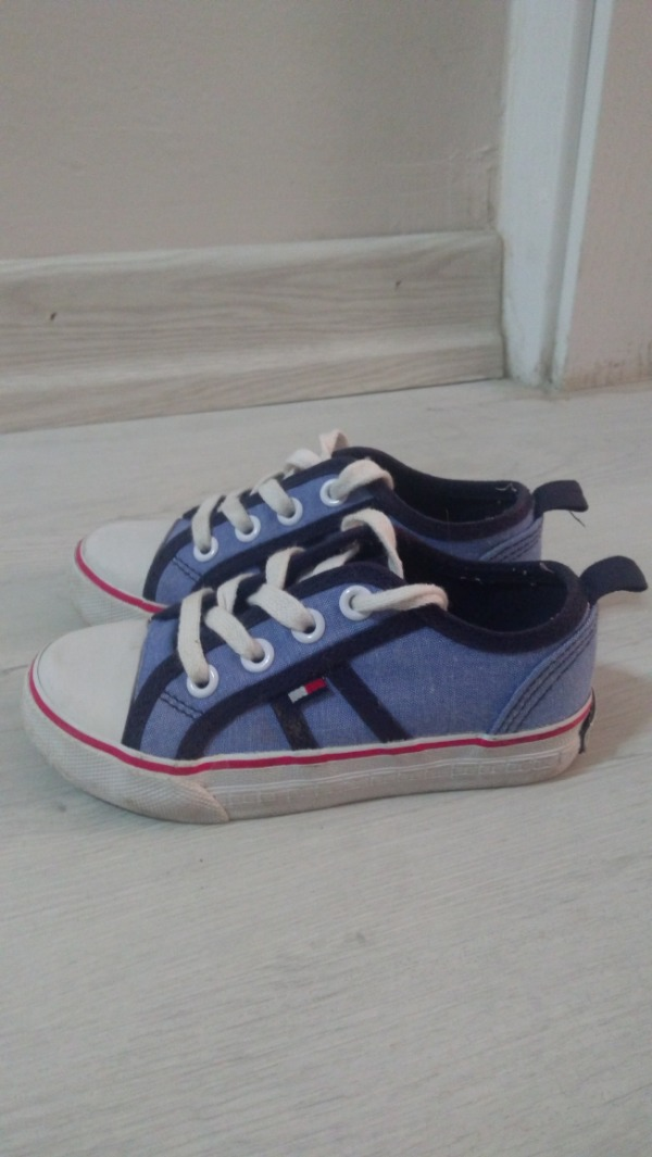 Tommy 23,5