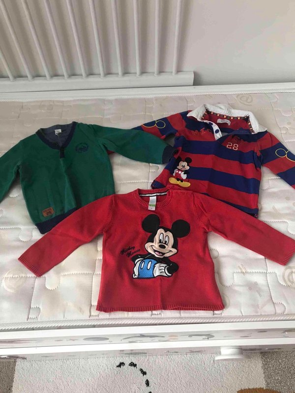Walt Disney World 18-24 Ay  Erkek Sweatshirt